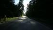 Fahrt im Wald