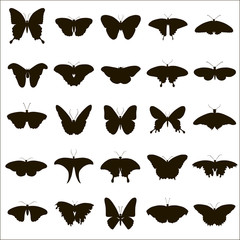 25 vector silhouettes of butterflies