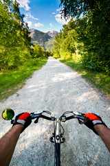 Biking in Alps