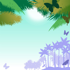 Vector background with butterflies and palms