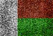 madagascar Flag color grass texture background