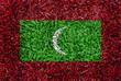 Maldives Flag color grass texture background