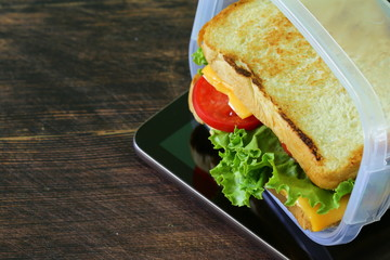 sandwich with cheese and tomato for a healthy lunch