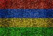 Mauritius Flag color grass texture background concept
