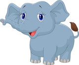 Young elephant cartoon