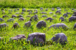 rows of rocks