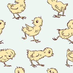 pattern of  chickens