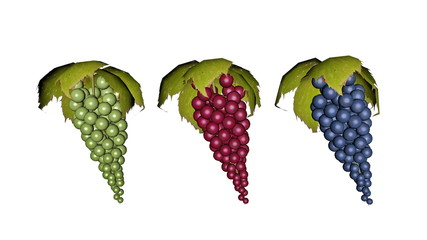 Set of grapes - 3D render
