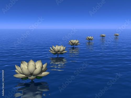 Water lilies steps - 3D render