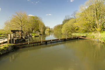 River Avon at Bickton near Fordingbridge