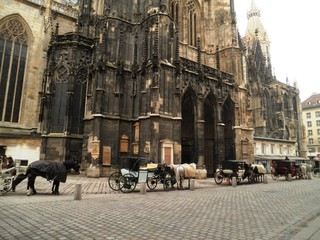 Horse Carriages Vienna