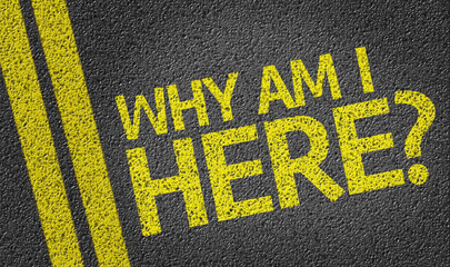 Why Am I Here? written on the road