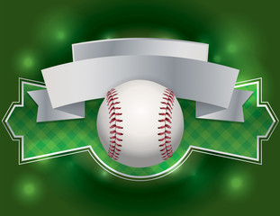 Baseball Emblem Illustration