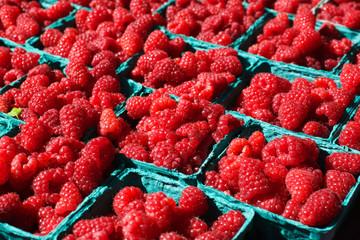 Bright Red Raspberries