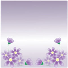 vector purple flowers on purple background