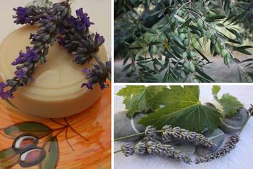 Savon à l'huile d'olive et Lavande