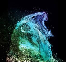 Lion abstract water splash