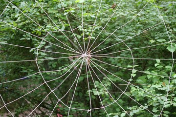 spider's Web woven with synthetic yarns in green forest full of