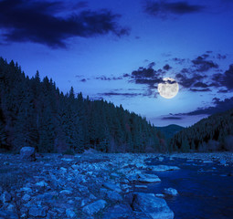 forest river with stones at night