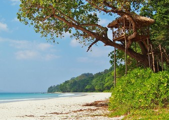 Tropical paradise beach, Radhanagar Beach, Havelock Island