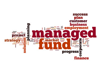 Managed fund word cloud