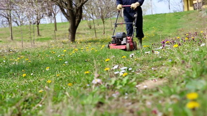 Male gardener working with lawnmower in orchard