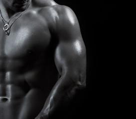 bodybuilder torso man