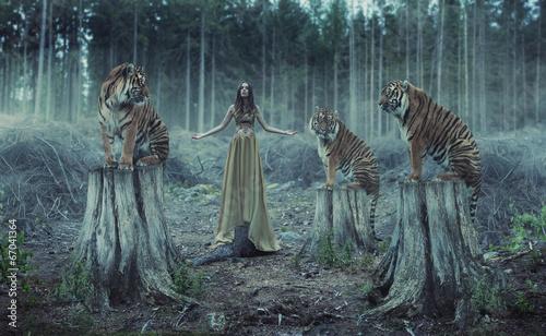 Zdjęcia na płótnie, fototapety na wymiar, obrazy na ścianę : Attractive female trainer with the tigers
