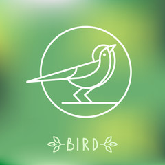 Vector bird icon in outline style