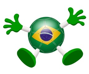 Soccer. Supporter of the Brazilian team