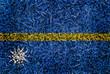 Nauru Flag color grass texture background