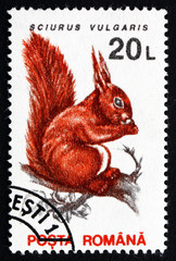 Postage stamp Romania 1993 Red Squirrel