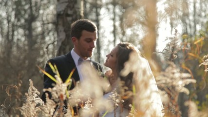 Beautiful couple in autumn pine forest at sunset