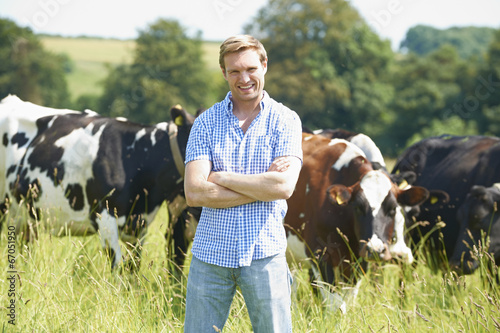 Portrait Of Dairy Farmer In Field With Cattle - 67051950