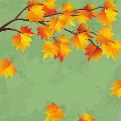 Vintage autumn wallpaper, leaf fall background