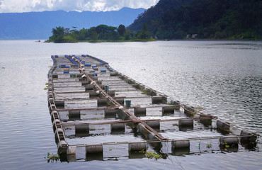 Fish farm on the Lake Maninjau