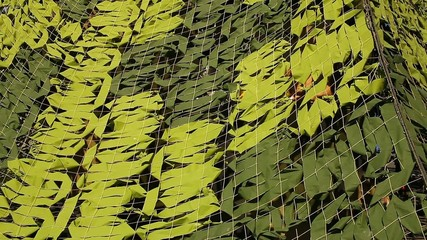 Military Camoflage Netting