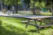 picnic table in park - 67056906