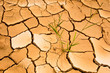 dry cracked clay ground,global warming