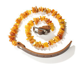 Pet collar from amber top view