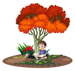 A boy reading under the tree