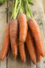 Carrot on wood background