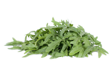 arugula herbs isolated