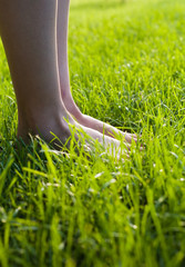 Foot in the grass. Legs on the grass