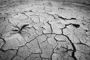 Black and white cracked clay ground,global warming