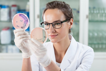 Doctor examining solution in Petri dishes