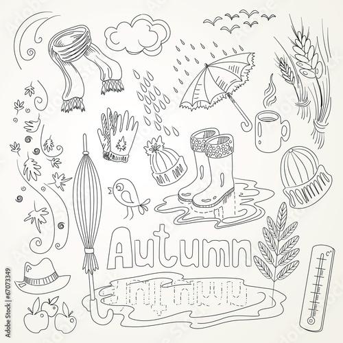 Autumn - 67073349