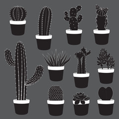 Cactus and Desert Plants Collection
