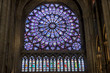 canvas print picture - Interior of Cathedral Notre Dame - Paris.