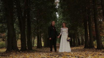 Wedding couple in a pine forest. Beautiful pine alley